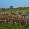 Loxahatchee Boardwalk