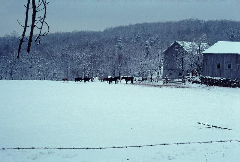 CT snow scene #5 - December 1976