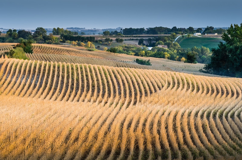 Another shot taken in the Loess Hills north of Council Bluffs, Iowa.