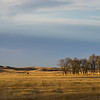 "In November of 2011 I went on a hunting trip north of Burwell, NE.  It is beautiful country in it's own unique way - sandhills, grassland, golden colors, peace.  To me, this shot captures the general nature of this area.  This was shot in the late afternoon during the ""golden hour""."