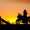 Description - Biker at Sunset <b>Title - Biker at Sunset</b> <i>- Nubia Richman</i>