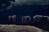 canyonlands_0261