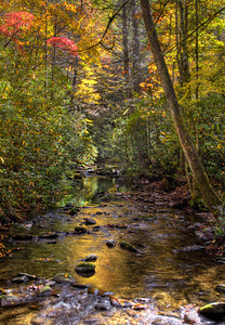 Stream and fall colors in Cataloochee Valley, Great Smoky Mountains