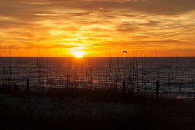 Sunrise - St. George Island, FL