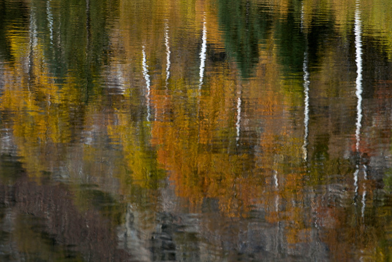 Early morning reflections at the beaver pond in Lundy Canyon in California's Eastern Sierras on October 5, 2013. My attempt to replicate Peter Lik's million dollar image.
