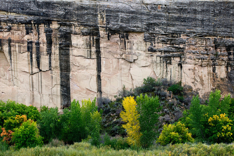 Varnished walls along Highway 149 in Dinosaur National Monument September 26, 2013 during overcast mid afternoon.