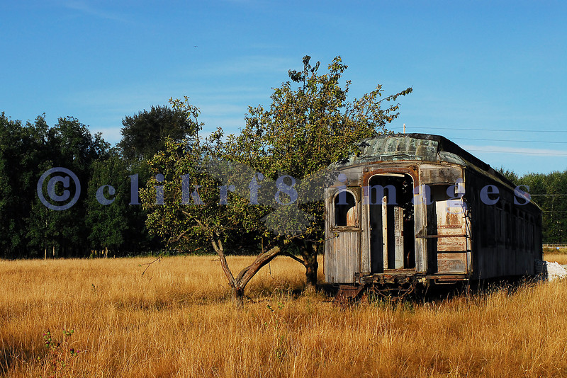 This abandoned rail car sits in an equally abandoned orchard along the road winding around March Point.