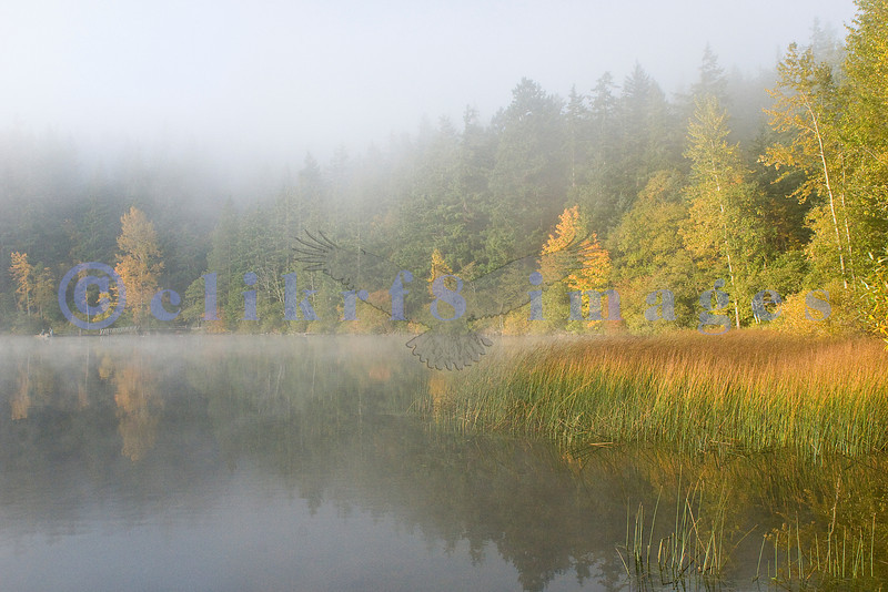 Lake Padden is a park within the city limits in Bellingham.