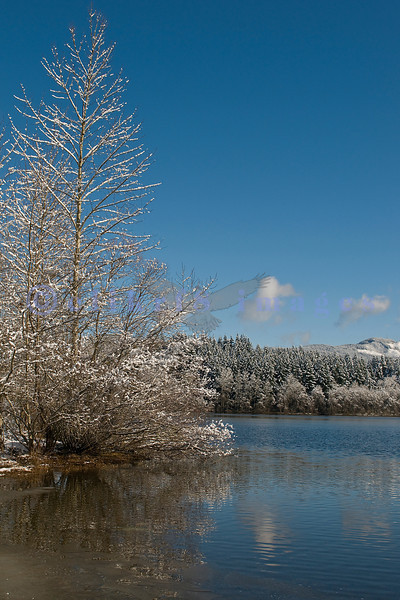 Lake Padden Park in Whatcom county with its mantle of snow on February 26, 2009. The immediate area received six inches of snow.