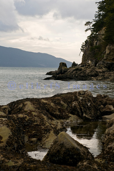 Larrabee State Park is situated on Chuckanut Drive, a short drive south of Bellingham, Wa. This picture was taken in late March on a grey afternoon when the low tide was -1.3 feet.