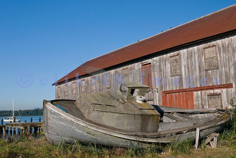 Double enders like this abandoned boat in front of  a former Alaska Packers building was used as a fishing boat.