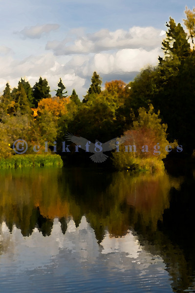 """Derby Pond in Bellingham's Whatcom Falls Park reflects late October's fall foliage. Special effects by Photoshop's artistic filter """"palette knife""""."""