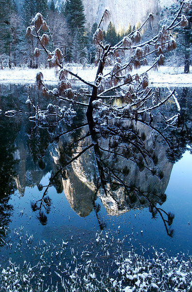 Winter Reflection, Yosemite NP<br /> (California, 2006)