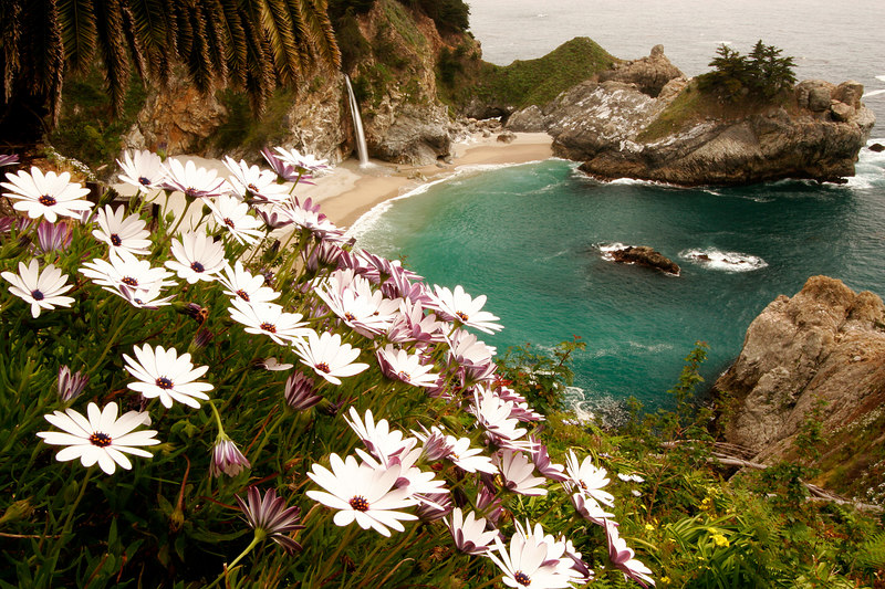 McWay Falls Cove, Julia Pfeiffer Burns SP<br /> (California, 2006)