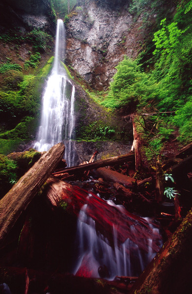 Merrymac Falls, Olympic NP<br /> (Washington, 2004)