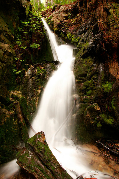 Secluded Falls, Julia Pfeiffer Burns SP<br /> (California, 2006)