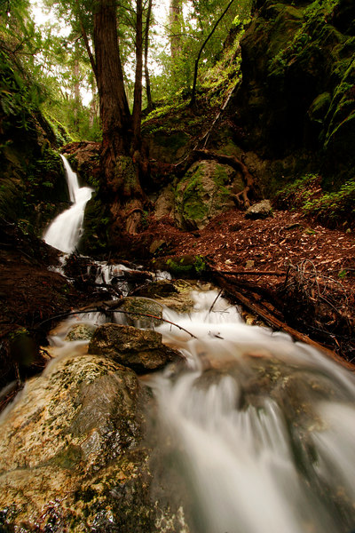 Falls and Rushing Creek, Big Sur<br /> (California, 2006)