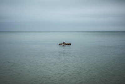 USA, MI. Minimalist seascape of  Lake Michigan at Saugatuck Dunes State Park with duck on rock.