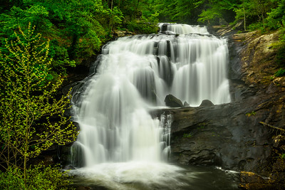 USA, Tennessee. Rushing mountain waterfalls amid vibrant green foliage of spring.