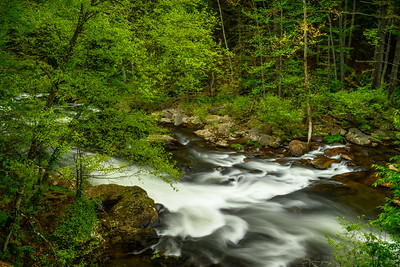 USA, Tennessee. Long exposure of rushing mountain stream, silky water, and vibrant green foliage.