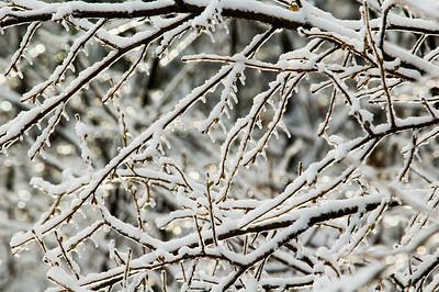 Winter scene - Laurentian Divide - Itasca County, MN