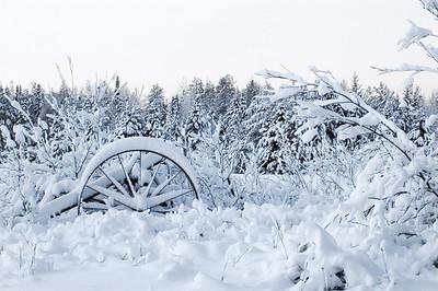 Winter Scene - Hibbing, MN