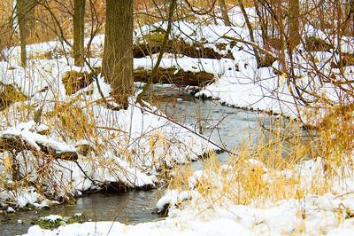 Stream In Winter - Bass Ponds - Hennepin County, MN
