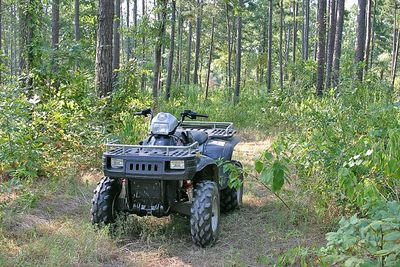 Taken with my Tamron 28-75 f/2.8 Lens. Woods behind the Ranch here. My 4-wheeler. Polaris 700 Twin.