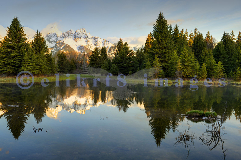 Schwabacher's Landing is a popular area to photograph the morning light catching the peaks of the Grand Tetons in Wyoming.