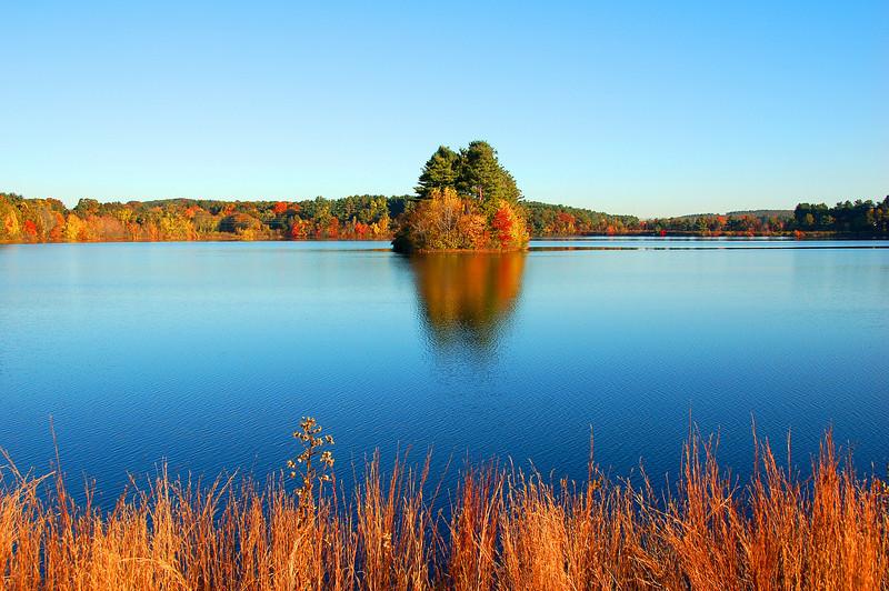 132 - Fall Foliage, MA