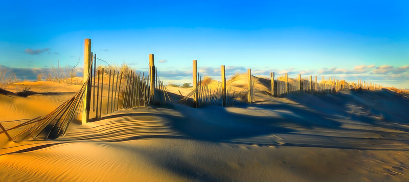 Assateague Island Fence and Dune