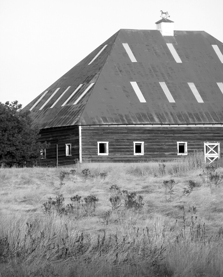 """HBC-101405-18BW """"Haybarn"""" Placerville, California.  Black-and-white image."""