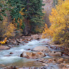 179 - Autumn Stream, Guanella Pass