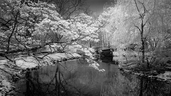 Bon Secours Pond