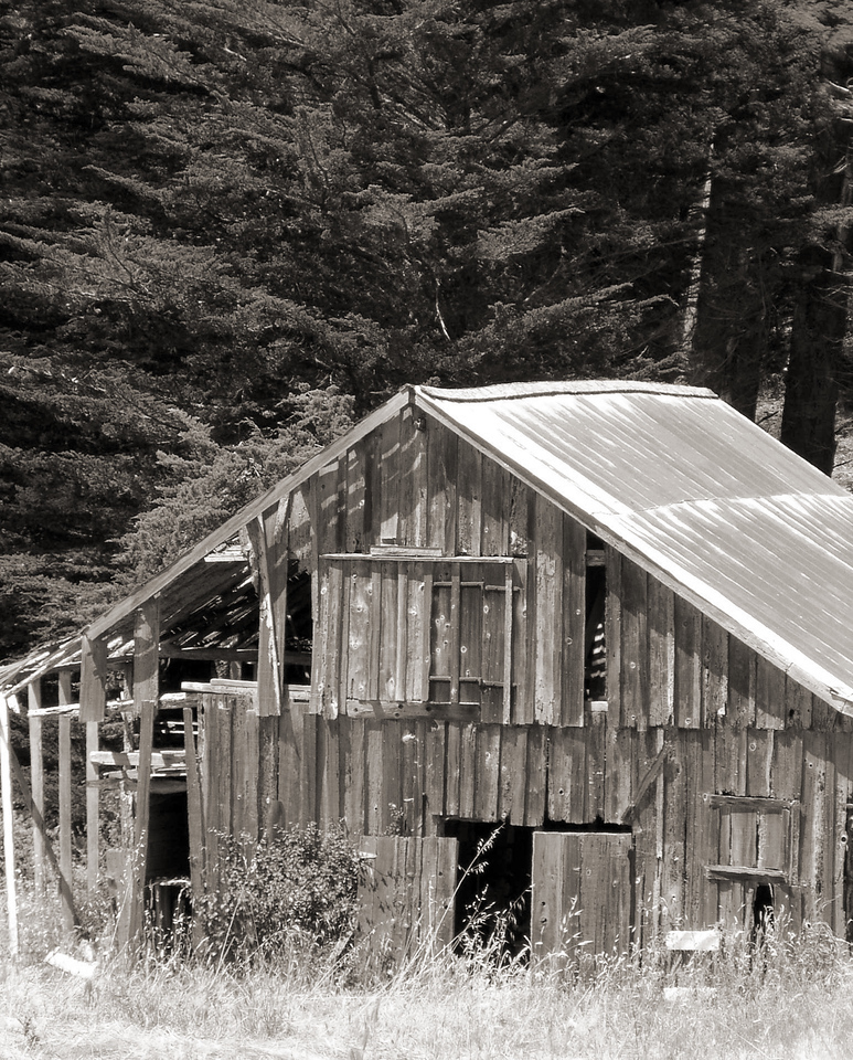 """HBC-082003-02-sepia  """"Rusty-Roofed Barn"""" Fort Ross State Historic Park, California.  Sepia-toned image."""