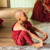 Young Monk3