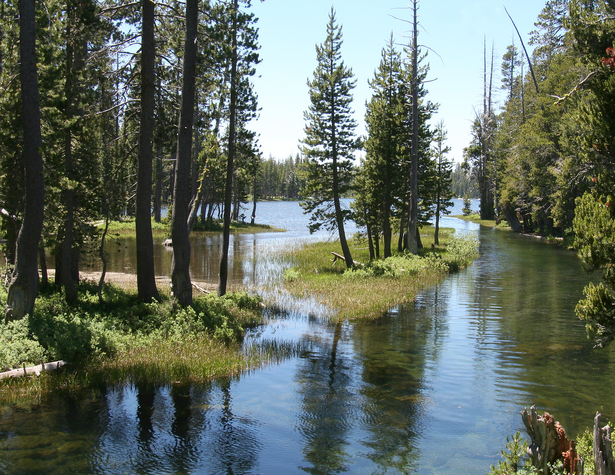 """Wright's Lake"" Wright's Lake, California.  July 2006"