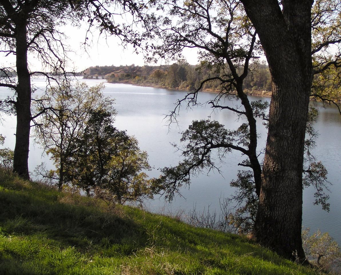 "SOC-112303-02 ""Overlook at Lake Natomas""  Folsom, California."