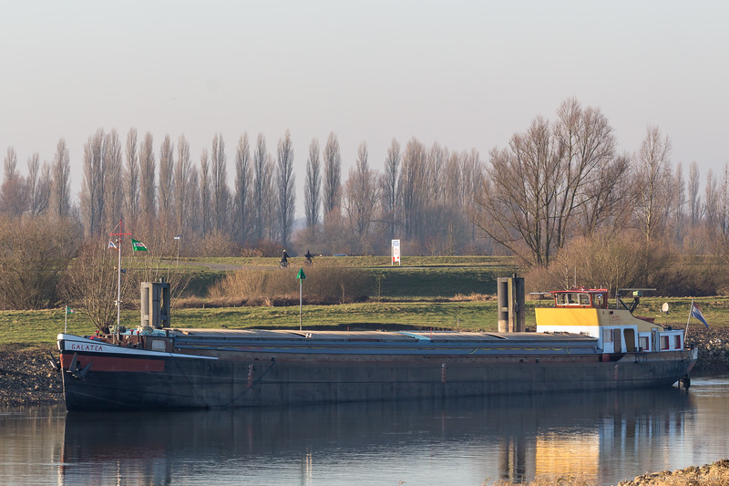 "Galatea, vrachtschip 02313783 <a href=""https://www.binnenvaart.eu/motorvrachtschip/710-galatea.html"" target=""blank"">info</a>"