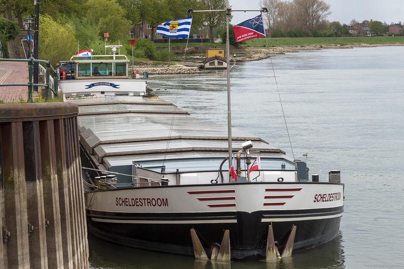 "Scheldestroom, vrachtschip 02316274 <a href=""https://www.binnenvaart.eu/motorvrachtschip/6150-res-nova.html"" target=""blank"">info</a>"