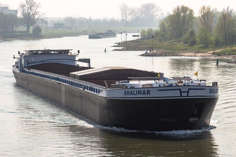 """Shalimar, vrachtschip 02328482 <a href=""""https://www.binnenvaart.eu/motorvrachtschip/10427-shalimar.html"""" target=""""blank"""">info</a>"""