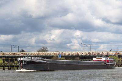 Adelaar, vrachtschip 02316726 info