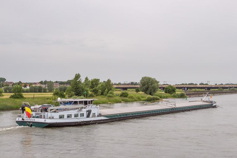 "Versus, vrachtschip 06004185 <a href=""https://www.binnenvaart.eu/motorvrachtschip/11616-versus.html"" target=""_blank"">info</a>"