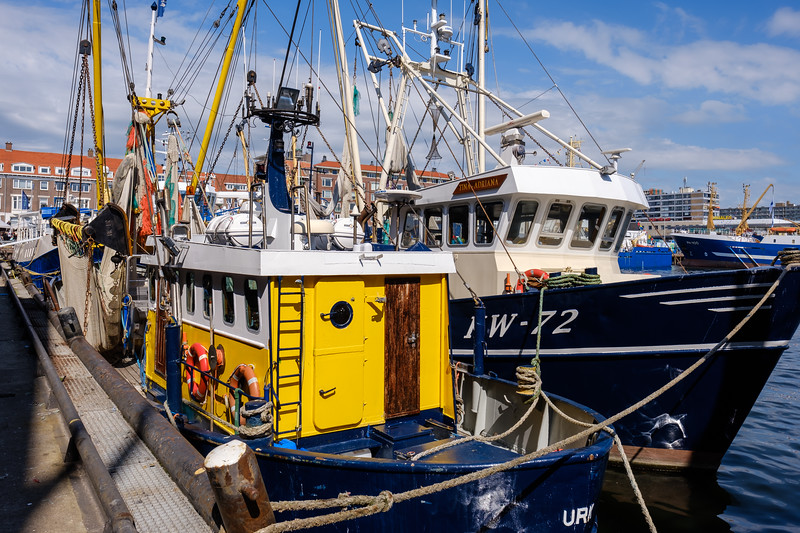 Scheveningen fishing boats docked in t the harbour