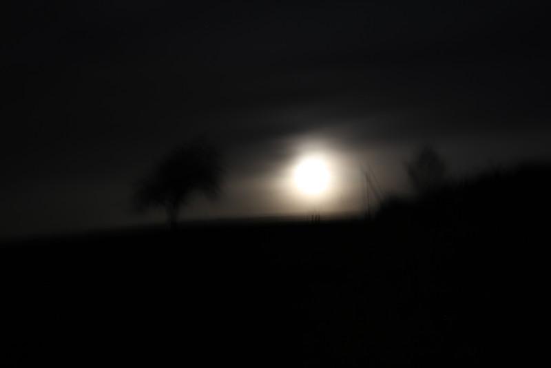 schlaflose Vollmondnacht, Sleepless Night