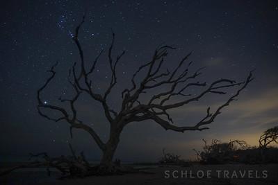 Stars over Driftwood Beach | Georgia