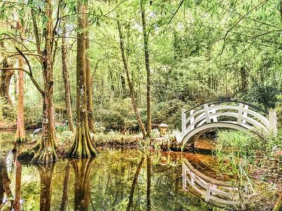 Magnolia Plantation Bridge | Charleston, South Carolina