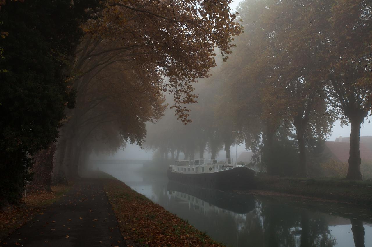 Lever du jour brumeux sur le canal du Rhône au Rhin