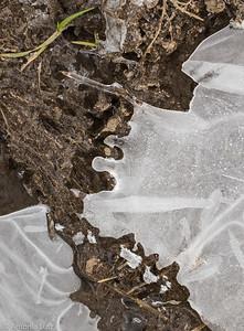 Eisdeckel