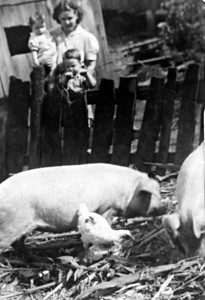 Beulah with Sandy and Bill, watching pigs. Love this picture.